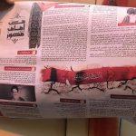 توزيع نشرة «زاد الثائرين» في عالي