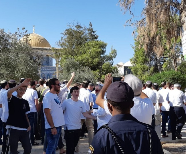 الصهاينة يقتحمون المسجد الأقصى واستمرار الاعتقالات في البلدات الفلسطينيّة