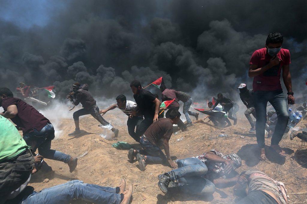 ائتلاف 14 فبراير: المجزرة الصهيونيّة بحقّ الفلسطينيّين تأتي بعد هرولة بعض حكّام الخليج للتطبيع مع الكيان الصهيونيّ