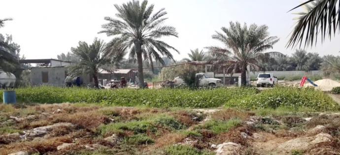 Al-Namir revolutionaries: Saudi regime aims to make demographic change and steal properties of al-Qatif residents